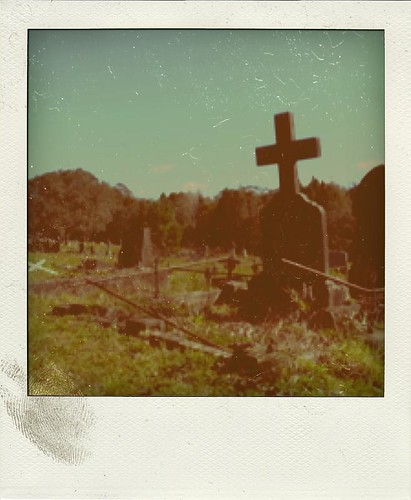 Cross Poladriod