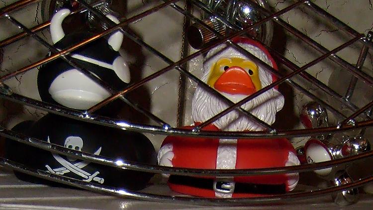 arrested duckies