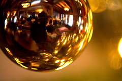 christmas fisheye