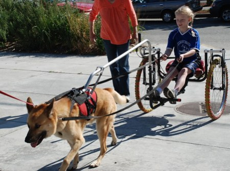 Girl with Dog Cart