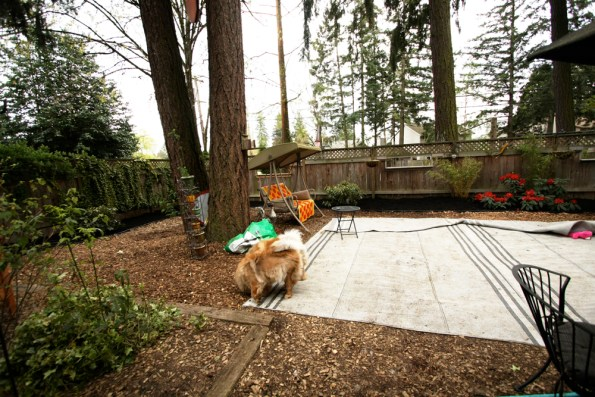 INTERIOR OF FRONT YARD REMODEL