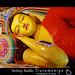 Reclining Buddha - Isurumuniya - Anuradhapura - Sri Lanka