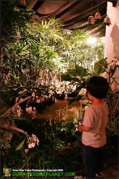 My Mother's Garden-9