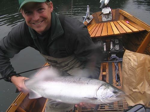 Oregon Coho salmon (aka Silver)