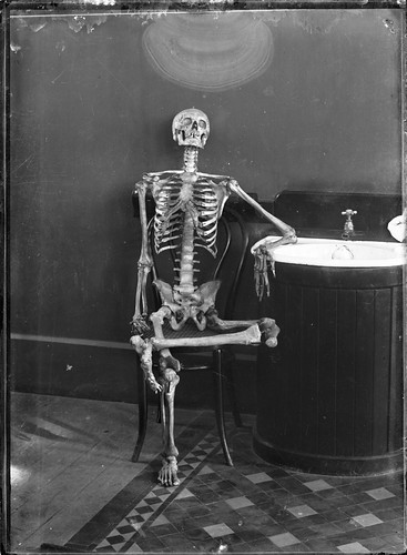 Portrait of an articulated skeleton on a bentwood chair