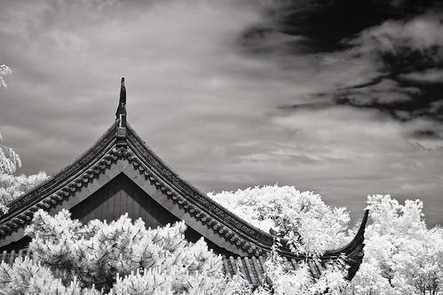 Toit chinois - chinese roof