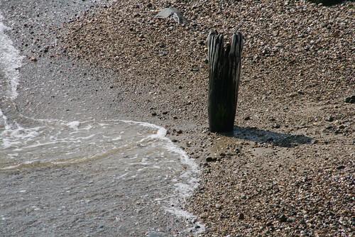 2008-08-25-MV-trip-oak-bluffs-beach3
