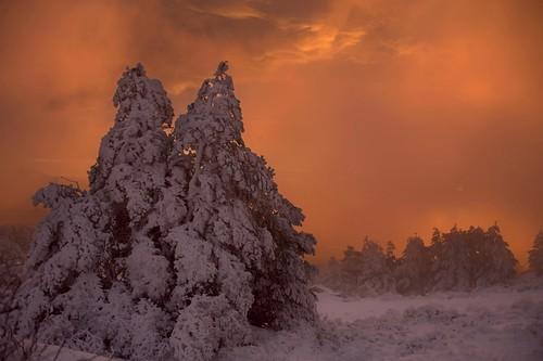 Amanecer cálido entre el frío de la nieve. Foto Pedro Merino