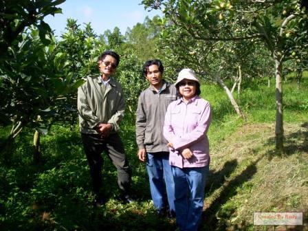 Rudi Mardiyanto di kebun kentangnya