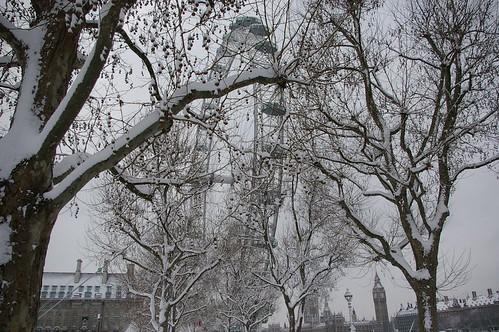 Snow_2009-90