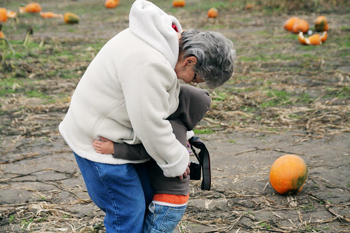 pumpkin patch 2008 015 copy by you.
