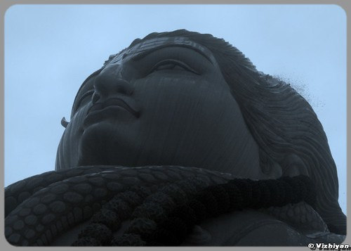 Shiva Close