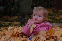 Selah Eating a Leaf