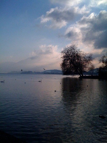 Zugersee by you.
