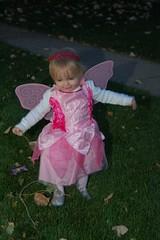 Fly Away Fairy