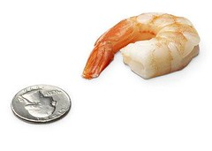 13-medium-shrimp