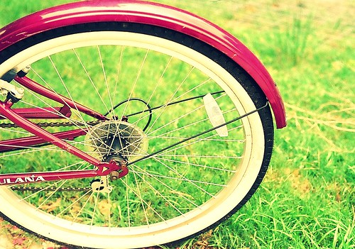 Back Wheel by Stephanie Megan