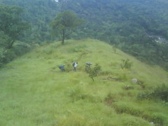Mullainagiri III 11