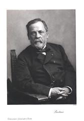 Portrait of Louis Pasteur (1822-1895), Chemist
