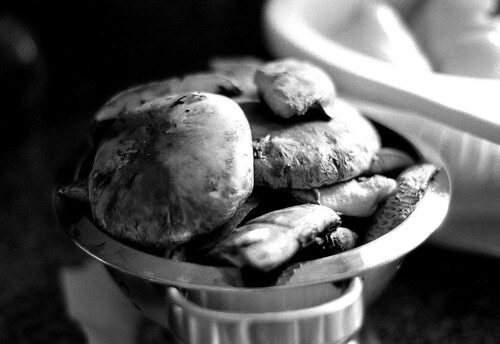 Portobello Mushrooms. (Ilford HP5 Plus. Nikon F100. Epson V500.)