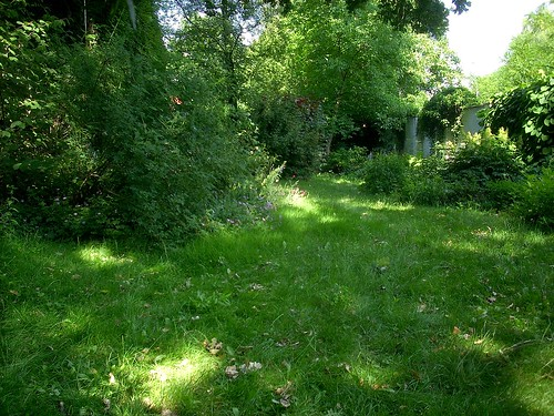 Blick von der Gartenbank