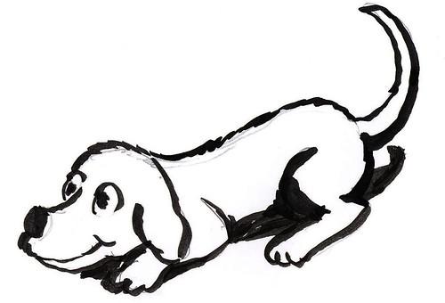 dog + animation