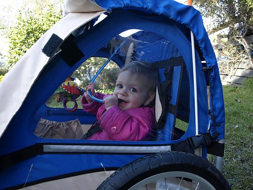 Tilly in her new bike carriage.