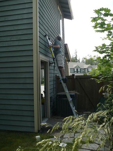 Yard Work 001