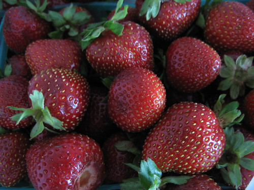 Gaviota strawberries from the Santa Monica Farmer's Market