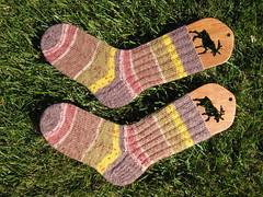 Socks_2008Mar22_StepBrownRedYellow_Mama