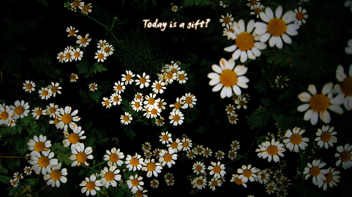 Today is a gift?
