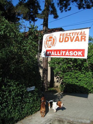 V. Fignár Fesztivál Udvar, Dubicsány 2011 036