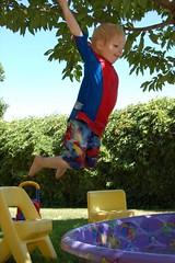 Jumping Bean Beau