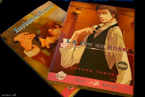 Gay Manga aka Yaoi