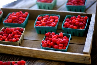 raspberries, because they were there