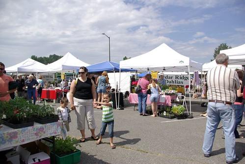 Mount Vernon Farmer's Market