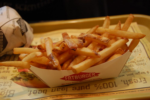 Thin Fries