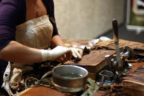 Hand-rolling cigars at Salone del Gusto in Turin