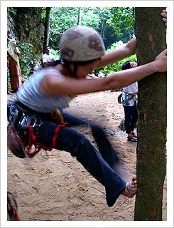 14-shen_tree