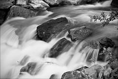 Rapids IIb