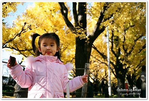 2008_1130_T3_42_29