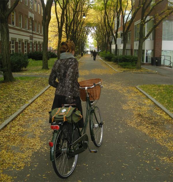 Autumn Passageway