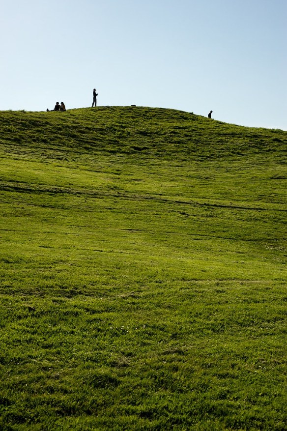People Flying Kites at Gas Works Park in Seattle, WA