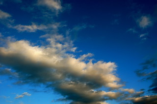 sky day 341