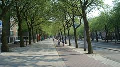 Amsterdam - bike lane - fietspad