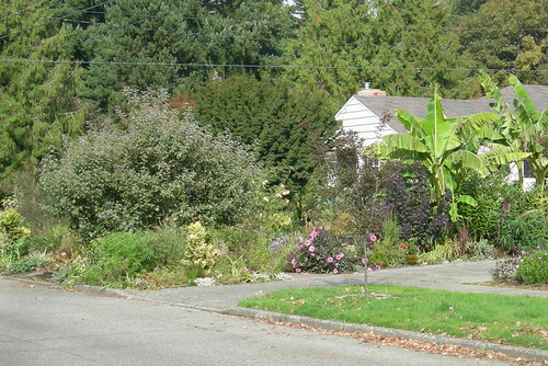 Garden is focus, not house