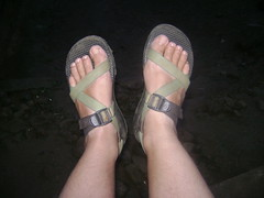 Chacos. Theyre always up for the same travels as me!