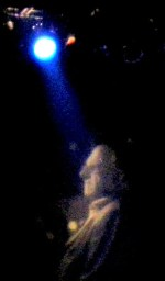 John Brogan at the Olympia