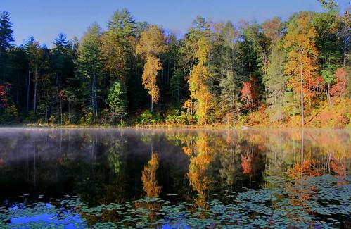 Light the Autumn Shore