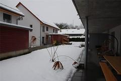 Der erste Schnee 2008-006